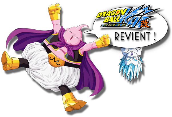 Dragon Ball Kai Majin Buu Saga