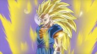 Vegetto Super Saiyan 3, dans DB Heroes