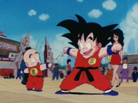 Dragon Ball épisode 019
