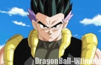 Gotenks adulte dans DB Heroes