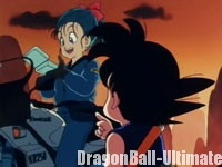 Bulma sort sa Capsule House