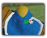 burta-dragon-ball-z-budokai