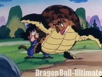 Gokū soulève la tortue de mer