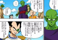 Piccolo apprend ses origines