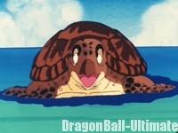 La tortue de mer remercie Son Gokū
