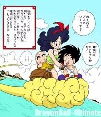 Gokū et Kuririn reviennent avec Lunch