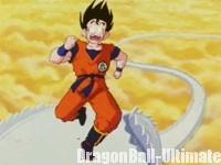 Gokū à la fin de l'épisode 011 de DBZ