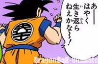 La marque de Kaiō apparaît dans le dos