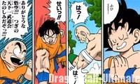 Les héros de Dragon Ball s'entraînent
