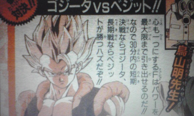 Gogeta VS Vegetto