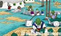 Les Nameks cultivent les Ajissa