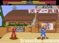 Un exemple de combat dans le jeu