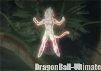 Le Super Saiyan God originel