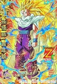 Gohan Super Saiyan 3 dans Dragon Ball Heroes