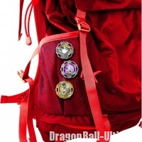 Dragon-Ball-Spinemblem-Bag