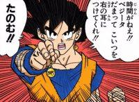 Gokū demande à Vegeta pour fusionner