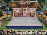 Le ring du Tenka Ichi Budōkai, dans l'anime