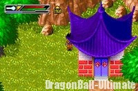 La maison dans Dragon Ball Z : Buu's Fury