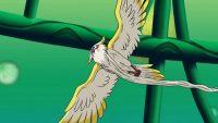 Tokitoki vole au dessus du Niz du Temps