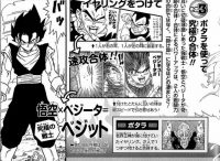 Le pouvoir de la fusion dans le Dragon Ball Super Exciting Guide : Story Hen