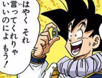 Gokū est finalement rassuré de savoir qu'il existe un antidote