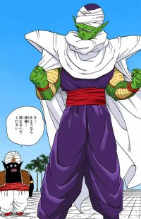 Piccolo, après sa réunification