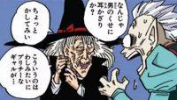 La sorcière accroche la Potara à son oreille