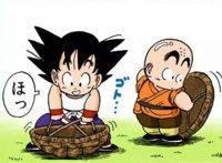 Gokū et Kuririn portent ces carapaces